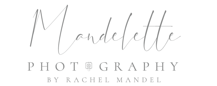 Chicago Fine Art Wedding Photographer | Mandelette Photography