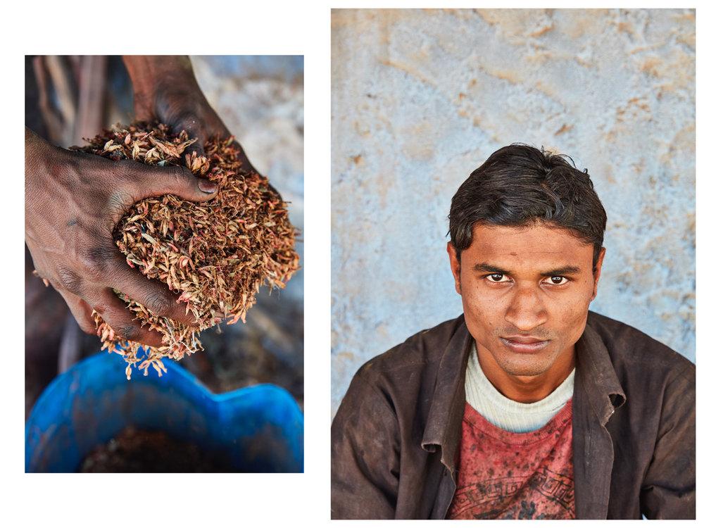 018-India_10.jpg