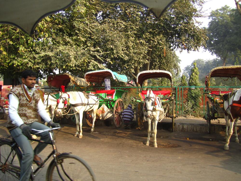 Delhi Agra_30Dec12 (35).JPG