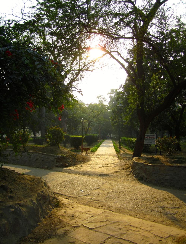Delhi Agra 29Dec12 (18).jpg