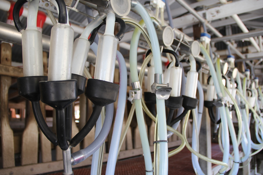 Milking Machines