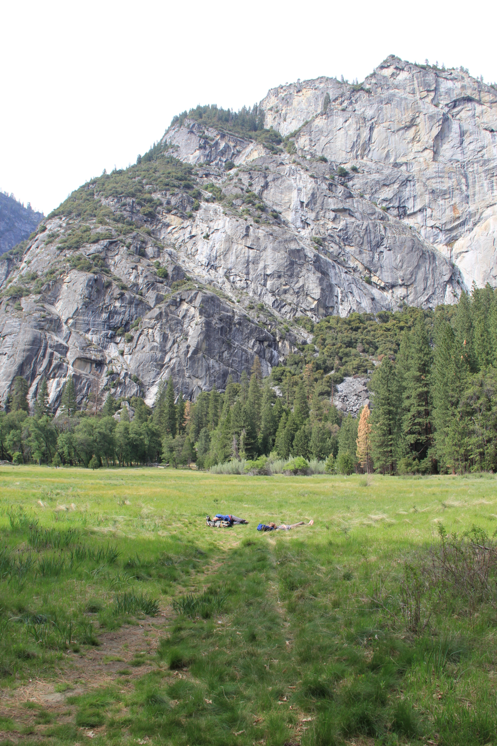 Hikers taking a quick nap in the meadow