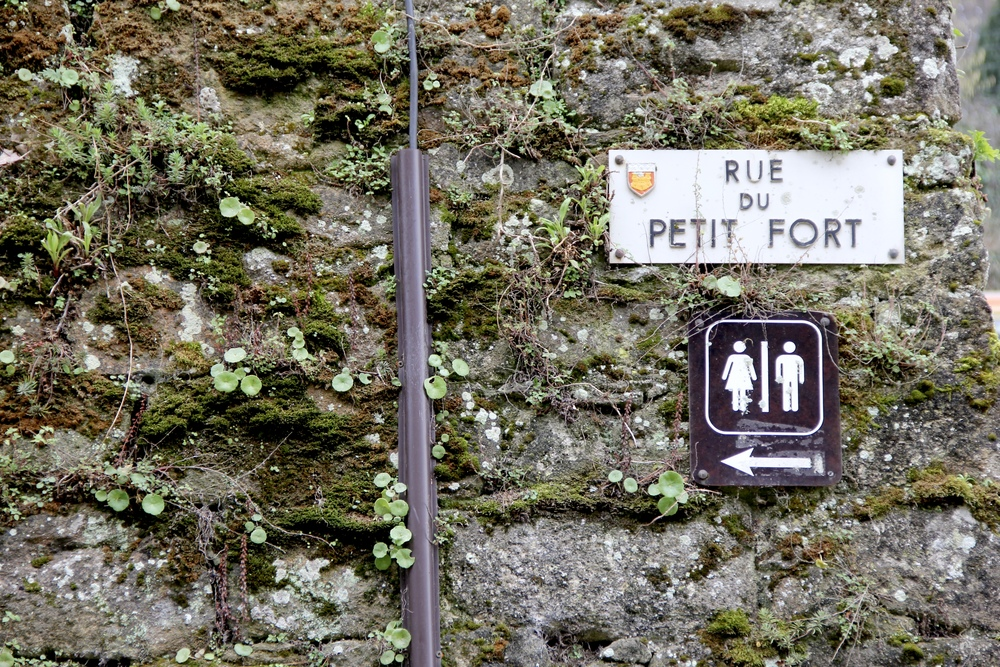Restrooms this way, Rue du Petit-Fort | Dinan, France