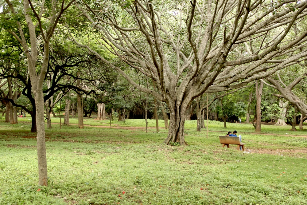 a couple escapes to cubbon park in bangalore, india | beyond ordinary guides