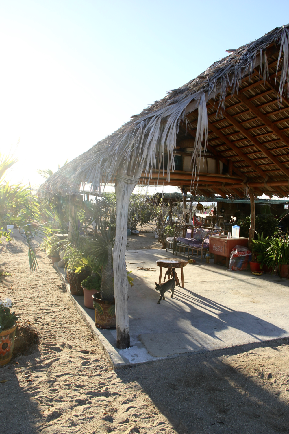 "The Blanket Factory | ""A Family Run Business in Todos Santos"" via Beyond Ordinary Guides"