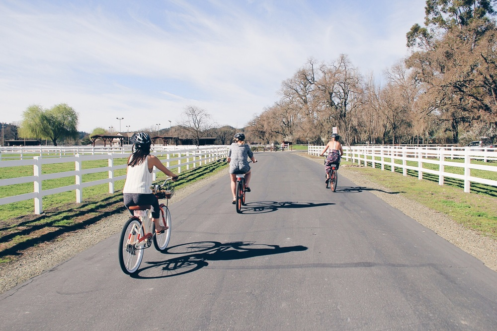 biking + wine is a good idea if you vow to visit one winery only!