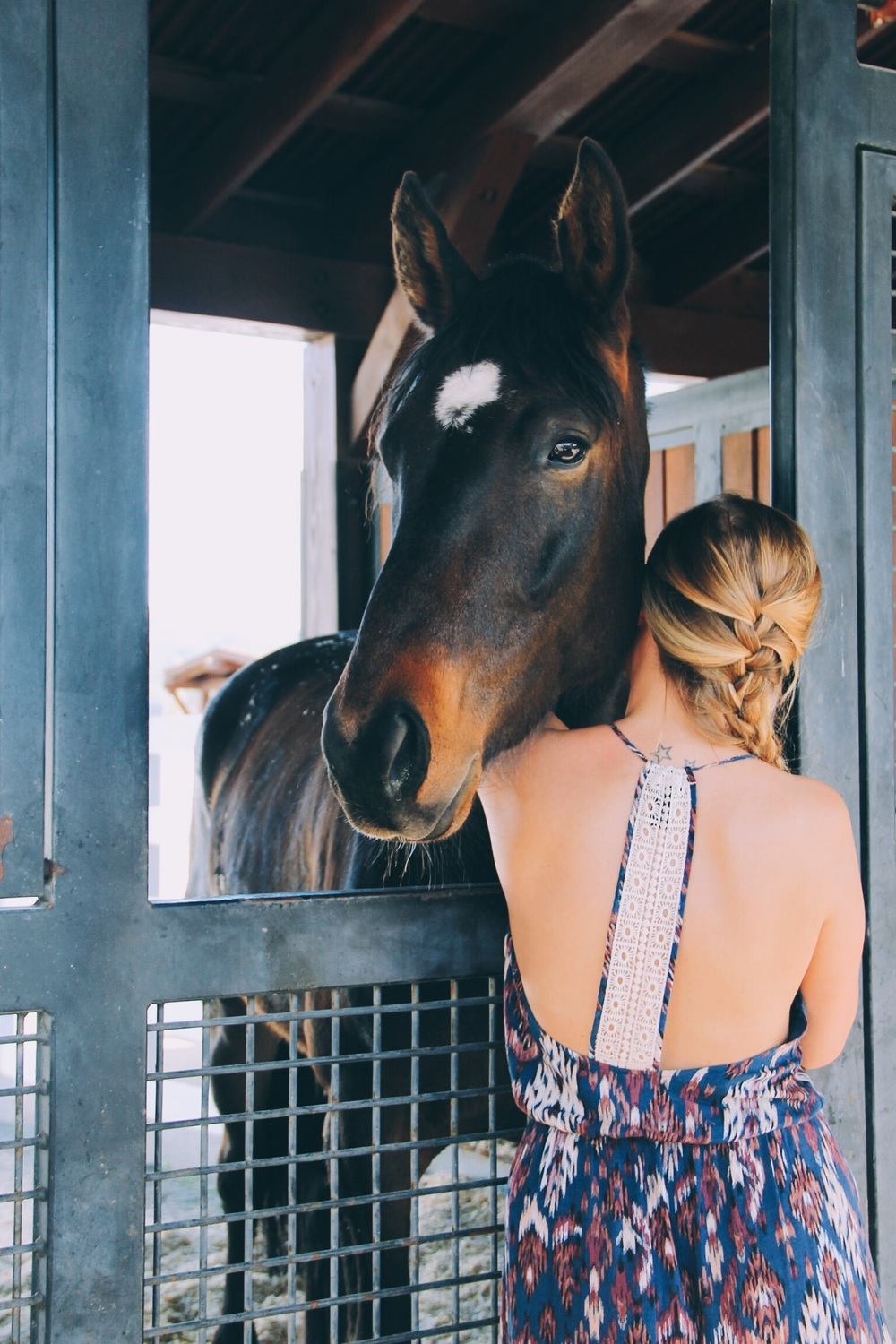 Our own horse whisperer | Maya meets Woody at Tamber Bey Vineyards