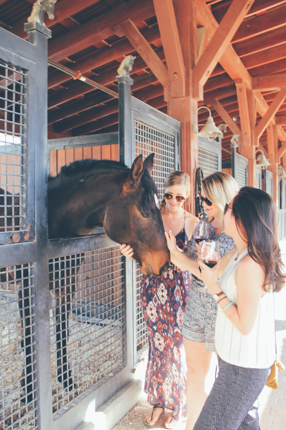 Meeting Woody at Tamber Bey Vineyards was the perfect end to our perfect day in Calistoga