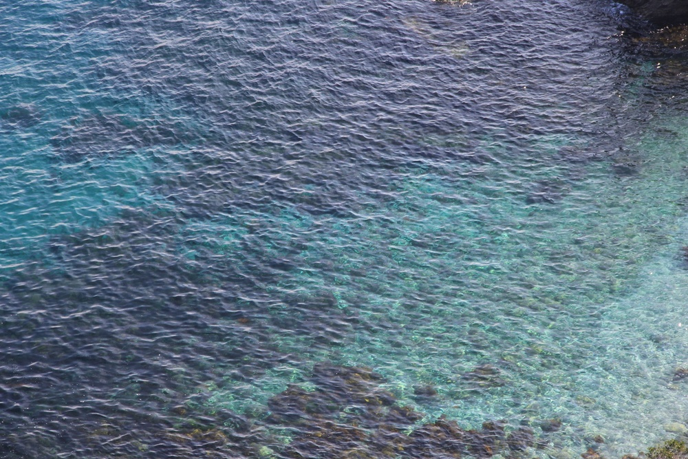 turquoise blue water at Catalina Island | a summer destination for hiking, snorkeling, scuba, and sailing