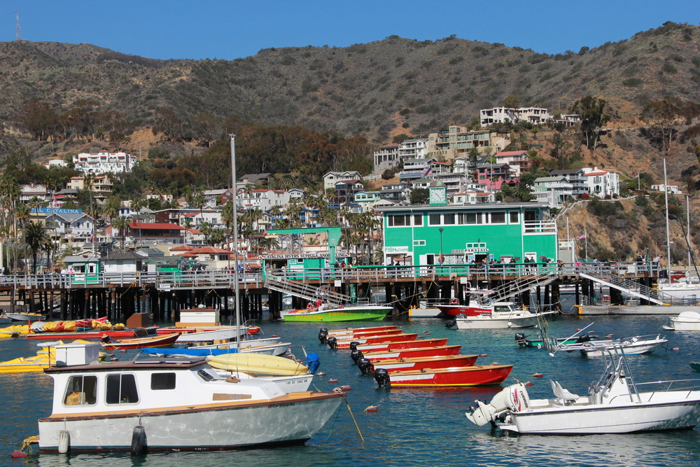 the charming town of Avalon