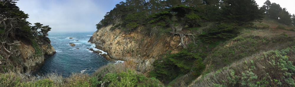 Point Lobos panorama