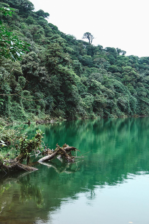 Cerro Chato