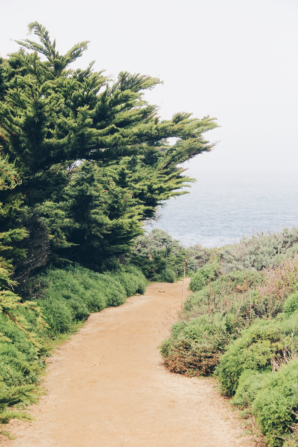 Point Lobos State Park via Beyond Ordinary Guides