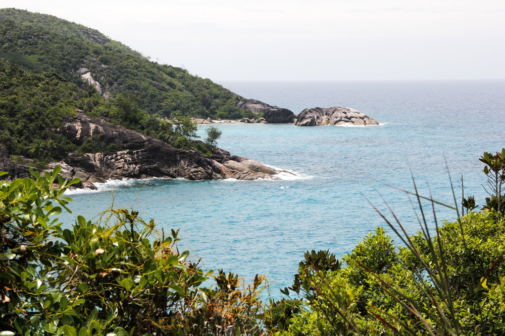 A view of your private beach before descending to complete Anse Major Trail