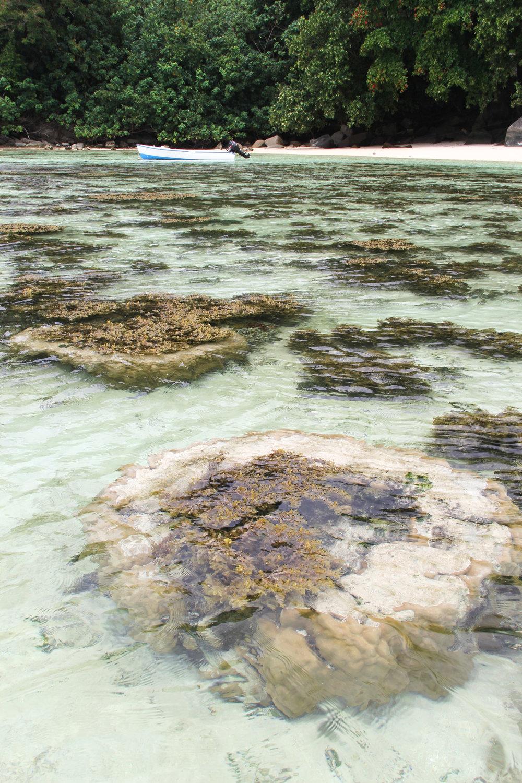 Port Luanay, Mahe, Seychelles