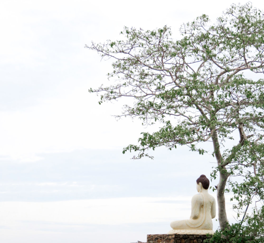 Sri Lanka South Coast-7.jpg