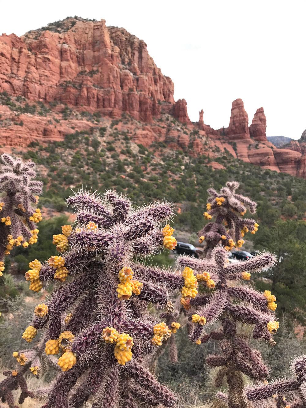 Beyond Ordinary Guides' Guide to Sedona, Arizona-115.jpg