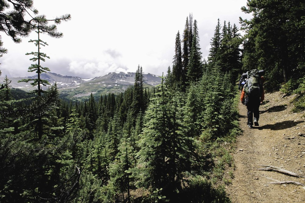 Hiking the Skyline Trail | Beyond Ordinary Guides-31.jpg