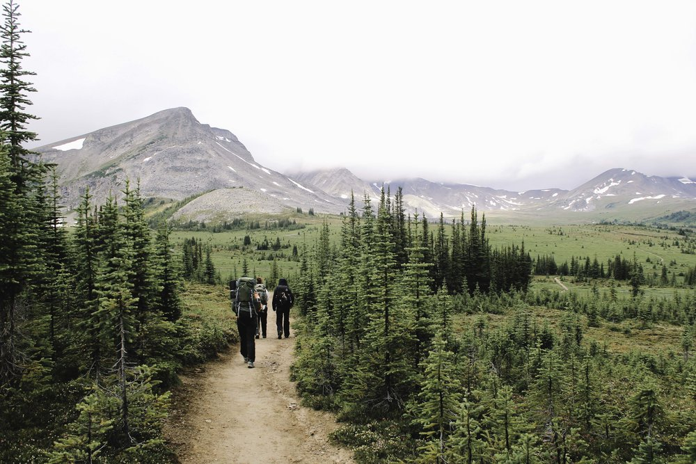 Hiking the Skyline Trail | Beyond Ordinary Guides-67.jpg