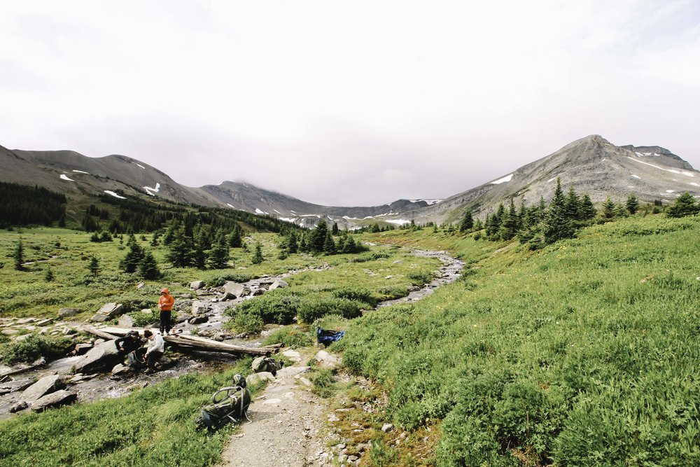 Hiking the Skyline Trail | Beyond Ordinary Guides-75.jpg