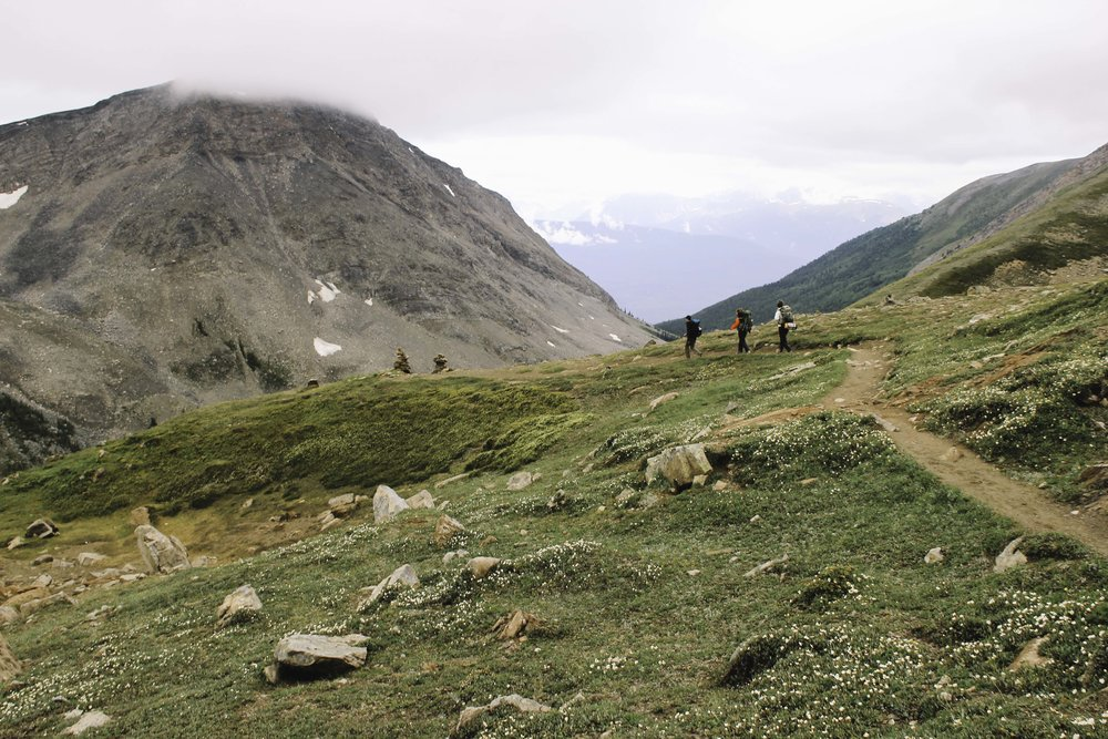 Hiking the Skyline Trail | Beyond Ordinary Guides-92.jpg