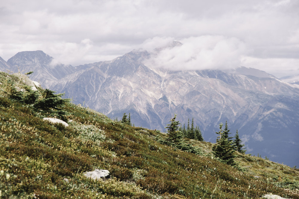 Hiking the Skyline Trail | Beyond Ordinary Guides-112.jpg