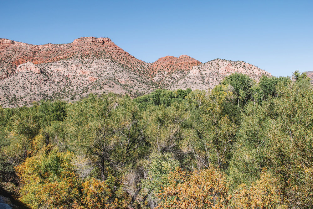 A Ride on the Verde Canyon Railway-39.jpg