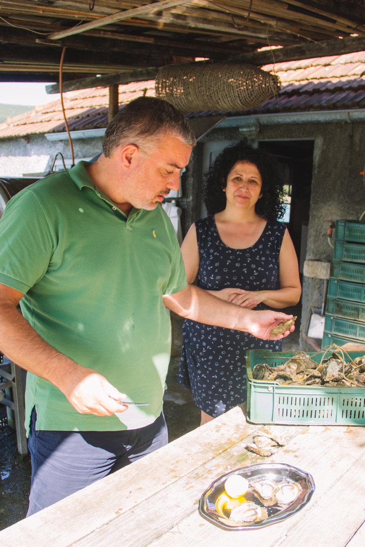oysters in ston, croatia-9.jpg