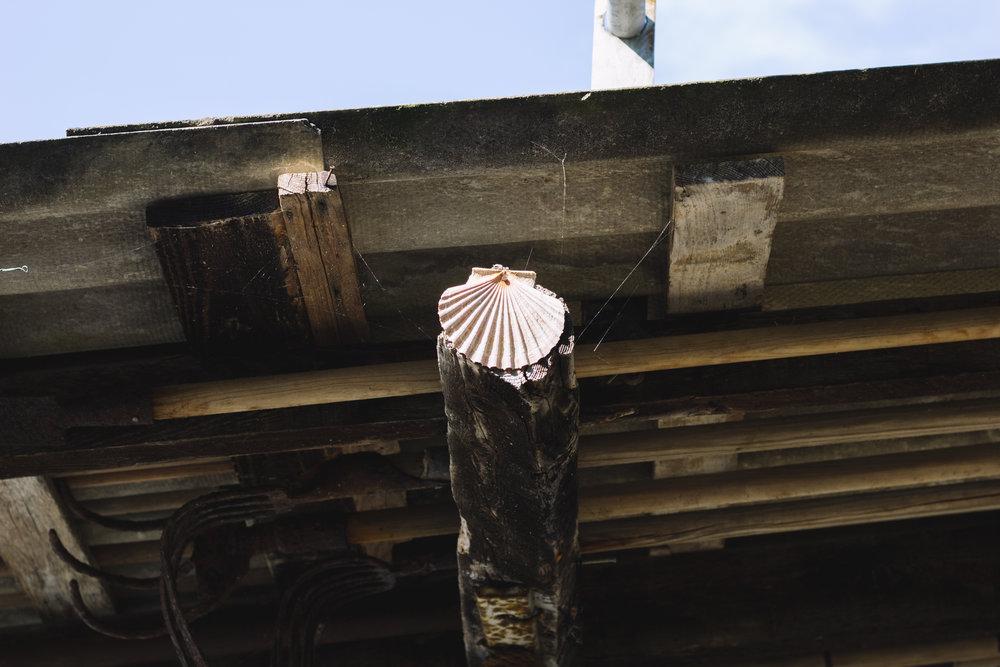 oysters in ston, croatia-54.jpg