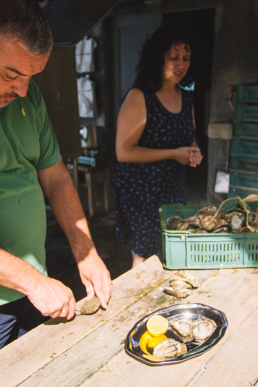 oysters in ston, croatia-10.jpg