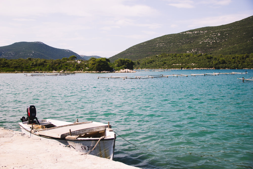 oysters in ston, croatia-14.jpg