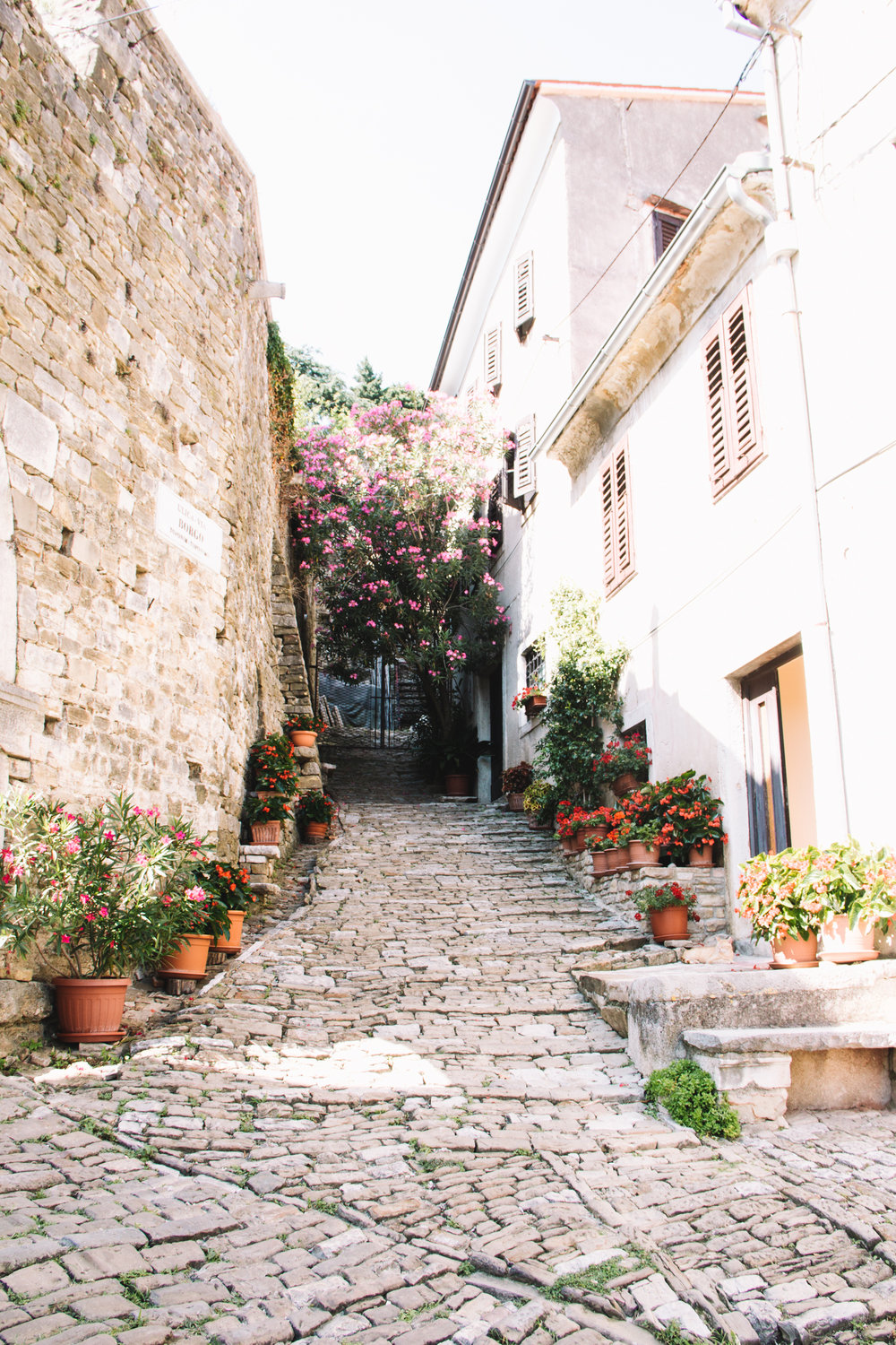 The charming streets of Motovun in Istria