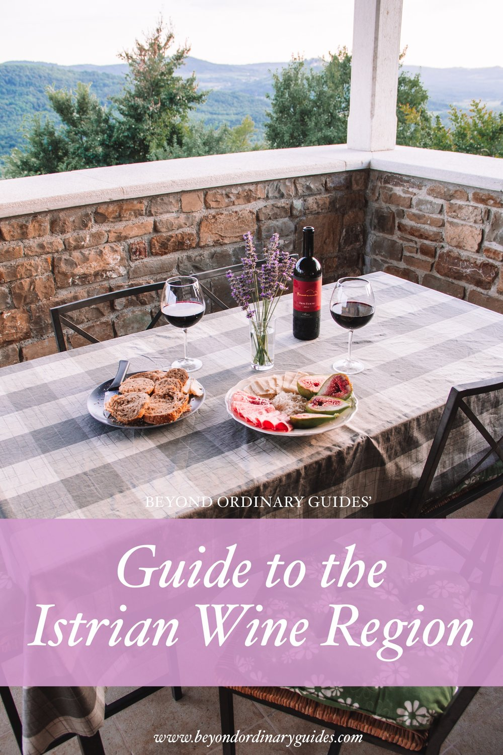 Guide to the Istrian Wine Region.jpg