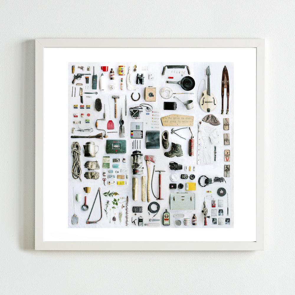 Spruce Park Taxonomy - White Frame.jpg