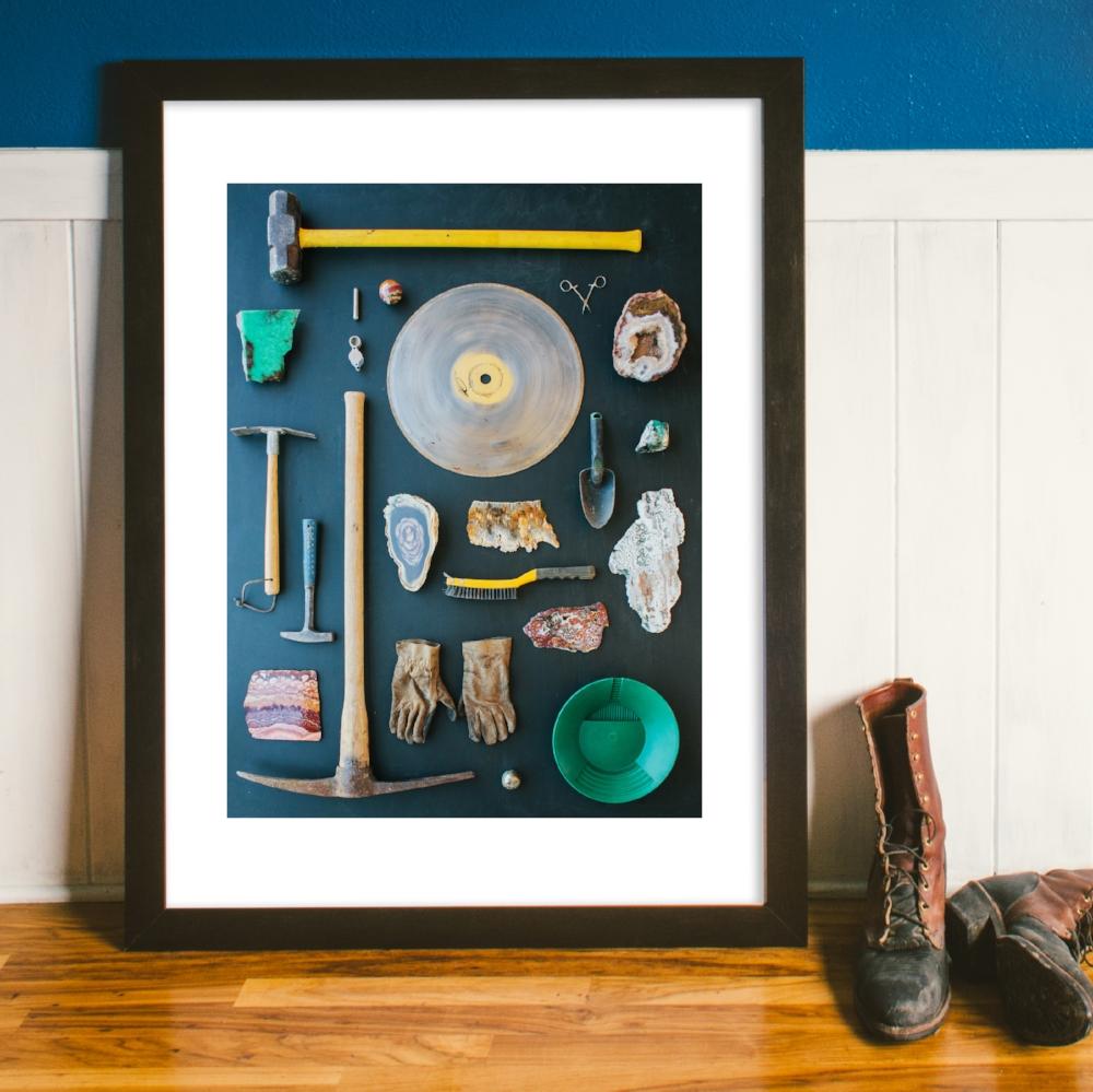 Spruce Park Taxonomy #1 Fine Art Print