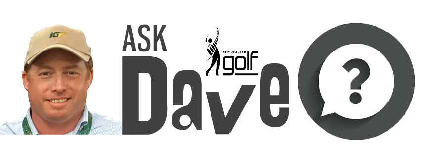 Ask Dave Logo.png