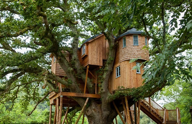 Fox and Hounds country hotel treehouse, Devon