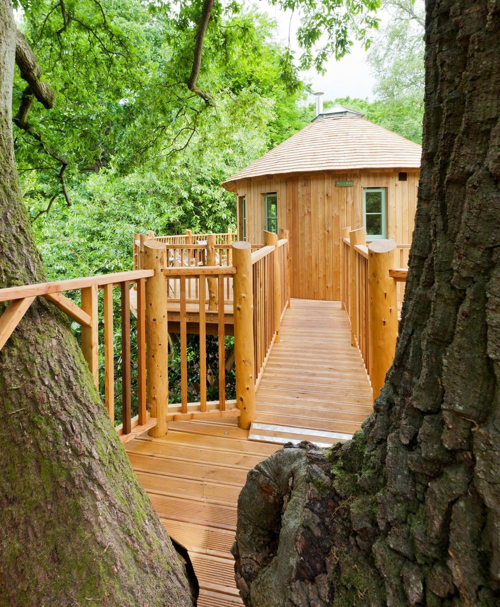 treehouse-4 (2).jpg