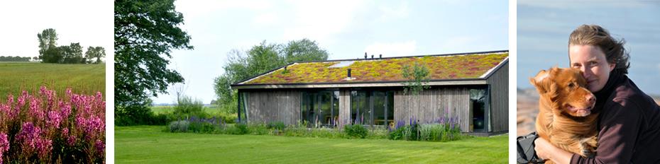ou_green_roofed_house_STUDIOALSJEBLIEFT.jpg