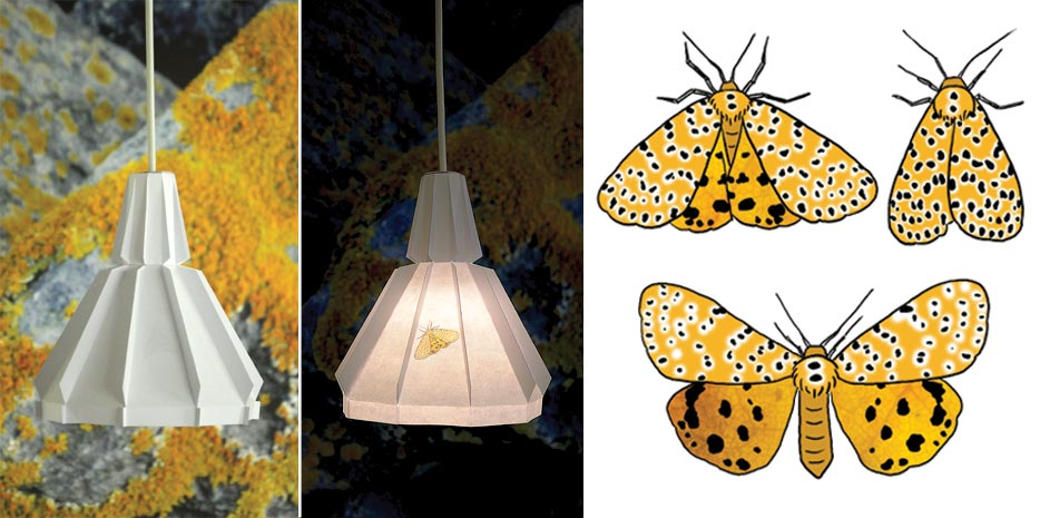 collage_moth_foldable_lamp_alsjeblieft.jpg