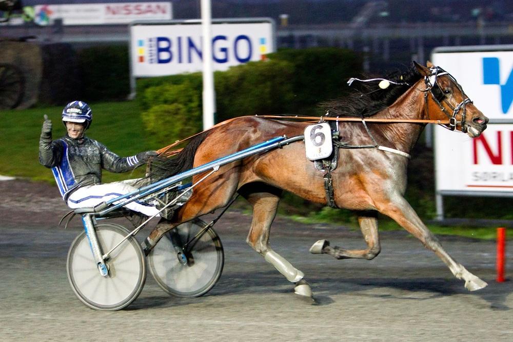Fjorårets vinner av Sørlandets 3-årscup, Wilma Leggrowbach og Geir Mikkelsen. Foto: Hesteguiden.com.