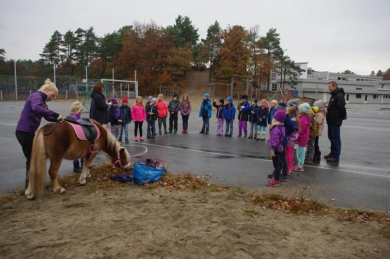 Det var en lydhør forsamling som tok imot shetlandsponnien Smedens Betty Boop på Høvåg skolen.