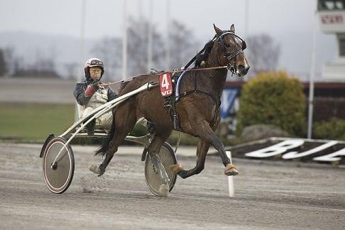 Hades Håleryd og Eirik Høitomt på vei mot seier på Bjerke i november 2014. Foto: Hesteguiden.com.
