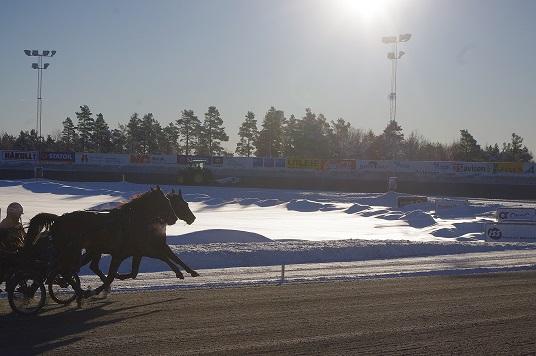 Idylliske treningsforhold på Sørlandets Travpark i januar. Foto: Richard Ekhaugen.
