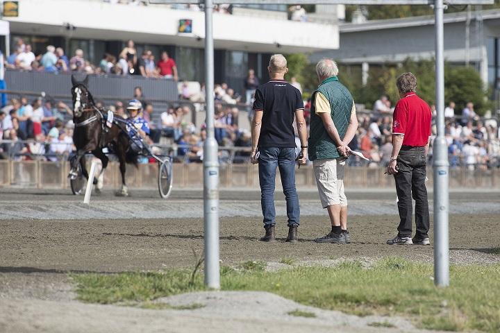 Mattilsynet har i dag, fredag, sendt ut utfyllende informasjon vedrørende mistanken om kverke på Epona ryttersenter. Illustrasjonsfoto: Hesteguiden.com.