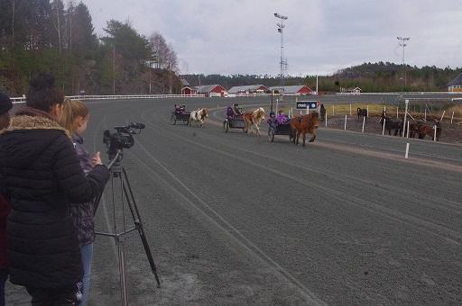 Regissørene fra Film- og medielinjen ved Møglestu VGS i full gang med å filme reklamefilmen for Travskolen. Foto: Richard Ekhaugen.