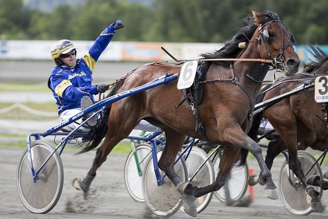 Oaks-vinneren Anazai testeT formen i kveldens rutineløp. Foto: Hesteguiden.com.