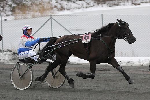 Mjølner Oda eies av et andelslag på fem personer i Stall Slusehesten fra Ørje. Her strekker Thygesen-traveren på seg for Lars Anvar Kolle i det avsluttende V75-løpet og sikrer sine eiere seierssjekken på 50 000 kroner.