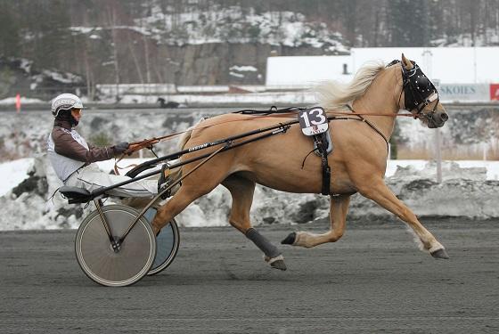Folkehesten Sørlandet, Global Ruska, havnet utenfor premierekka i V75-3, men Kari Anne Knutsens gule hoppe var et flott skue i løpsbanen sammen med Eirik Høitomt.