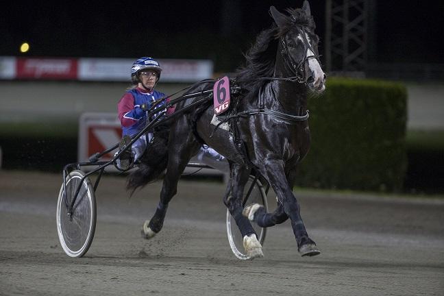 Tjomsland-traveren Gompen Elden, her med Anette Frønes i sulkyen, er en mulig Derby-hest i september. Foto: Hesteguiden.com.